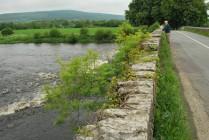 Cork Blackwater - Fishing For Sale