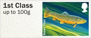 0621-brown_trout_sta