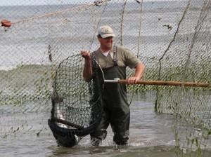 http://www.salmon-troutscotland.org/?dm_i=CVM,2EYHF,BDFA8S,8RYOS,1