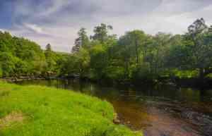 River Aline 034
