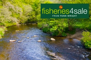 Fisheries 4 Sale