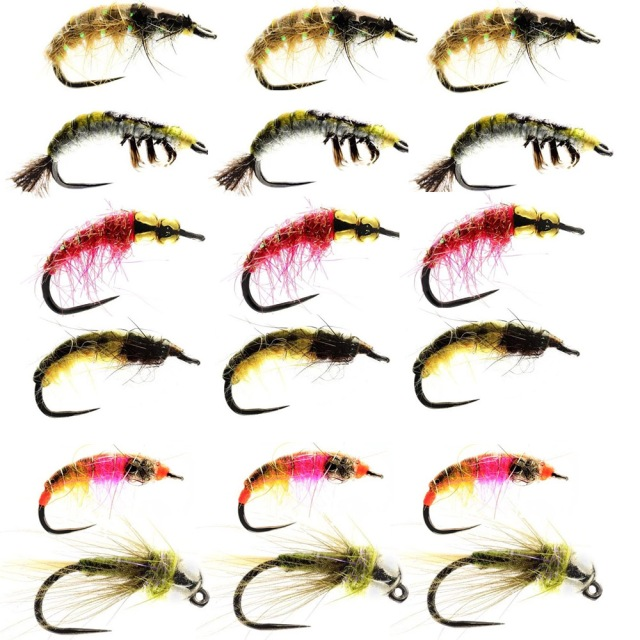 grayling-bugs